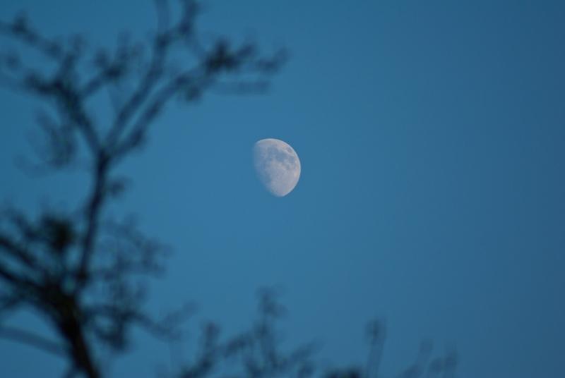 Месец и пола године